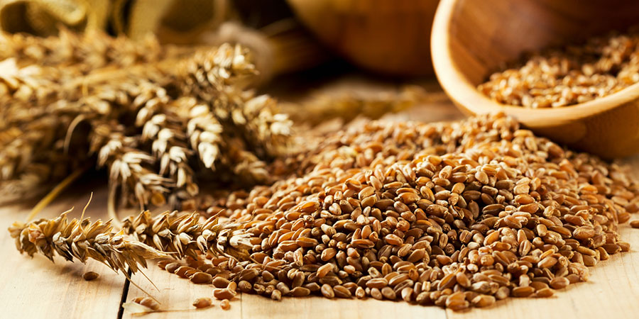 Refined/Processed Grains